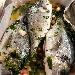 -Orata al forno con olive taggiasche alla vernaccia - - - Fotografia inserita il giorno 04-04-2020 alle ore 08:46:44 da pasqualefranzese