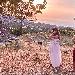 -Synaulia  - -Synaulia  - Fotografia inserita il giorno 17-10-2021 alle ore 22:32:35 da nicolarivieccio