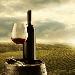 Dazi: stop cinese al vino USA spinge il Made in Italy. Sulla via della seta nuove opportunità, da olio a pomodoro