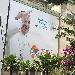 -veritatis gaudium Papa Francesco - -veritatis gaudium Papa Francesco - Fotografia inserita il giorno 15-06-2019 alle ore 19:40:19 da nicolarivieccio