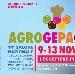 AgroGePaCiok - - - Fotografia inserita il giorno 16-10-2019 alle ore 19:01:50 da lucrezia