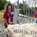 Aminea Winery  - - - Fotografia inserita il giorno 27-09-2021 alle ore 15:21:06 da eduardocagnazzi