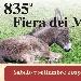 07/09 - Trebaseleghe (PD) - 835ª Antica Fiera dei Mussi
