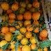 Arance di stagione - - - Fotografia inserita il giorno 30-10-2020 alle ore 10:09:37 da boutfrutta