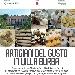 Artigiani del Gusto in Villa Burba - - - Fotografia inserita il giorno 21-10-2019 alle ore 19:14:00 da faraone