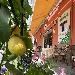 Bar Calise ad Ischia Porto - - - Fotografia inserita il giorno 22-06-2021 alle ore 21:49:13 da luigi