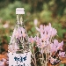 Bottiglia Fonte Margherita - - - Fotografia inserita il giorno 03-08-2021 alle ore 08:44:27 da eduardocagnazzi