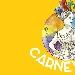 Carnevale - - - Fotografia inserita il giorno 22-01-2020 alle ore 16:00:54 da adrya