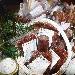 Cracovia - Salumi tipici esposti al mercatino natalizio