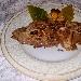 Crespelle del Vulture senza glutine e senza lattosio - - - Fotografia inserita il giorno 25-11-2020 alle ore 09:35:41 da silvfelicolucci