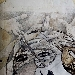 Dieci tele per dieci artisti: Marie Fatou Kiné AW, Yuki Kamide, Claudia Meyer, Ana Rodriguez, Carla Viparelli, Dawit Abebe, Dino Izzo, Yasunari Nakagomi, Miguel Osuna, Duane Paul -  - Fotografia inserita il giorno 24-04-2019 alle ore 01:05:23 da renatoaiello