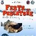 Festa del Pescatore - - - Fotografia inserita il giorno 15-07-2019 alle ore 16:55:30 da faraone