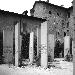 Fondazione De Felice, GIORNATA DELLA MEMORIA, incontro online con Elena Montanari - I Musei della Memoria V edizione mercoledì 27 gennaio ore 17.30  - Fotografia inserita il giorno 22-01-2021 alle ore 13:44:19 da renatoaiello