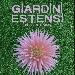 Giardini Estensi XIV Edizione - - - Fotografia inserita il giorno 05-08-2021 alle ore 21:55:19 da faraone