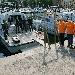 I finanzieri della Campania, attraverso Banco Alimentare Onlus, donano 20.000 pasti alle famiglie bisognose della regione - - - Fotografia inserita il giorno 11-08-2020 alle ore 16:54:20 da luigi
