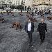 Inaugurata oggi la mostra Wolves Coming di Liu Ruowang curata da Matteo Lorenzelli Arte - Cento grandi lupi hanno invaso la piazza del Municipio di Napoli  - Fotografia inserita il giorno 14-11-2019 alle ore 22:30:18 da renatoaiello