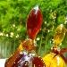 """Liquore Nero come la lava solidificata, Liquore Rosso come il sangue e Liquore Giallo per omaggiare """"Faccia Gialla""""   - - - Fotografia inserita il giorno 17-09-2020 alle ore 23:33:34 da renatoaiello"""