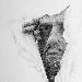MASSIMILIANO GALLIANI Attraverso alla Salamon Fine Art di Milano  -  - Fotografia inserita il giorno 26-05-2020 alle ore 17:10:28 da renatoaiello