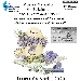 Mostra Mercato IV Edizione - - - Fotografia inserita il giorno 18-01-2020 alle ore 09:19:50 da faraone