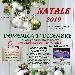 Natale 2019 - - - Fotografia inserita il giorno 14-11-2019 alle ore 09:33:42 da faraone