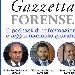 Novità, il podcast giuridico per aggiornarsi, ovvero Gazzetta Forense  - Gratis su tutte le principali piattaforme: Spotify, Apple, Amazon e Google  - Fotografia inserita il giorno 30-07-2021 alle ore 09:36:47 da renatoaiello