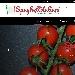 Spaghettitaliani, la nuova piattaforma del gusto dedicata al Made in Italy