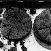 Nuove date della mostra Sing Sing. Il corpo di Pompei al MANN, dal 21 gennaio 2022 50 scatti di Luigi Spina per scoprire i depositi del Museo  - L