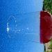 Rosé 1 -  - Fotografia inserita il giorno 16-02-2020 alle ore 01:44:07 da lalepreelaluna