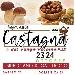 Sagra della Castagna e del Fungo Porcino P.A.T. - - - Fotografia inserita il giorno 15-10-2021 alle ore 08:28:48 da lucrezia