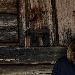 Stefano Di Dio - - - Fotografia inserita il giorno 22-09-2021 alle ore 13:46:30 da carlodutto