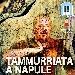 Tammurriata a Napule - - - Fotografia inserita il giorno 18-09-2019 alle ore 13:51:54 da jimih