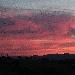 Tramonto su vigneto 2 -  - Fotografia inserita il giorno 16-02-2020 alle ore 01:23:14 da lalepreelaluna