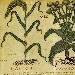 UN NUOVO DEFIBRILLATORE IN BIBLIOTECA  - - - Fotografia inserita il giorno 28-07-2021 alle ore 18:17:20 da renatoaiello