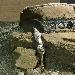UN REPERTO STRAORDINARIO, EMERSO INTEGRO DALLO SCAVO DI CIVITA GIULIANA, IL CARRO DA PARATA A QUATTRO RUOTE -  - Fotografia inserita il giorno 27-02-2021 alle ore 11:43:10 da renatoaiello