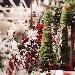 Villaggio di Natale Flover - - - Fotografia inserita il giorno 12-11-2019 alle ore 17:36:27 da luigi