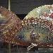 artigianato di Valencia - - - Fotografia inserita il giorno 17-02-2020 alle ore 20:48:45 da harrydiprisco