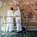 avvio del restauro del Mosaico di Alessandro al MANN  - Il Direttore del MANN, Paolo Giulierini: Scriviamo una pagina importante per la storia del Museo e la conservazione dei beni culturali. - Fotografia inserita il giorno 05-03-2021 alle ore 15:22:04 da renatoaiello