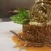 Flan di parmigiana di melanzana, provola ed emulsione di pomodorino del Vesuvio