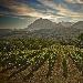 """Il 18 Maggio alla Dogana dei Grani di Atripalda (Av) """"Ciak Irpinia"""", degustazioni, seminari e incontri dedicati ai vini irpini"""