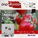 Il 26 giugno al ristorante Mostobuono si celebra l'Oro Rosso della Campania