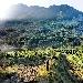 Il 6 ottobre a Lapio (Av) vendemmia e trekking nella patria del fiano di Avellino Docg. Arrivo col treno storico Irpinia Express