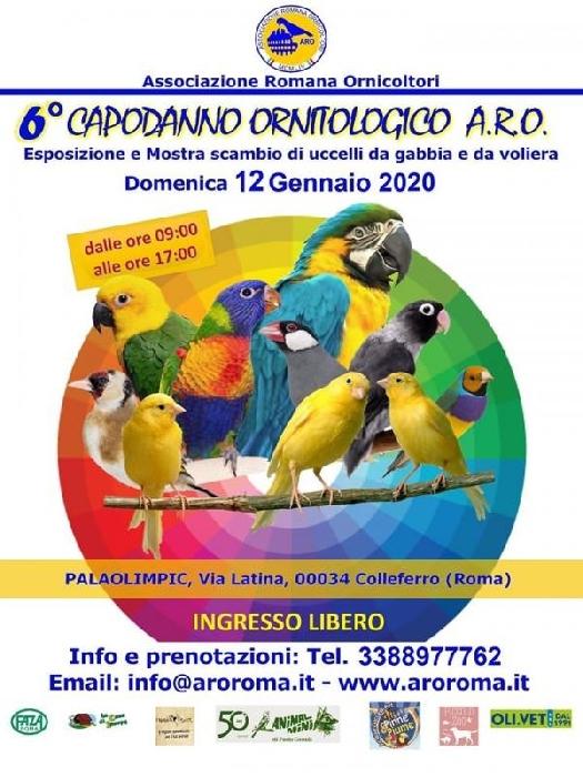 12/01 - Palaolimpic - Colleferro (RM) - 6° Capodanno Ornitologico