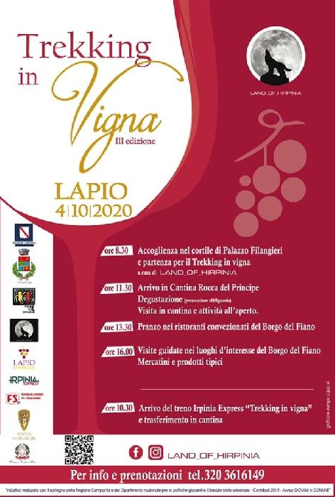 04/10 - Lapo (AV) - Trekking in Vigna III Edizione