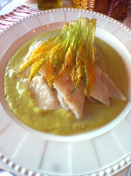 Testaroli mantecati al pecorino su crema di zucchine con fiore di zucca croccante