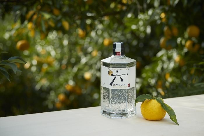 Roku Gin e albero e frutto Yuzu