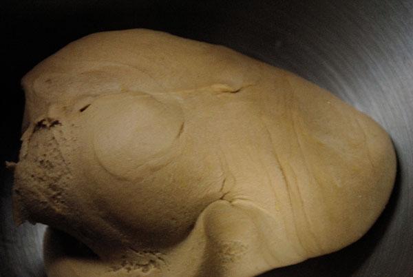 Cappellacci di merlot ripieni di trevigiana e bastardo del Grappa su crema di noci e zafferano - impasto