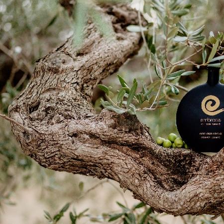 -Olio extra vergine di oliva un abbraccio al benessere