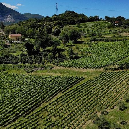 4 ottobre Trekking in vigna e degustazioni nel borgo del Fiano con il treno storico Irpinia Express