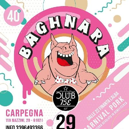 Baghnara