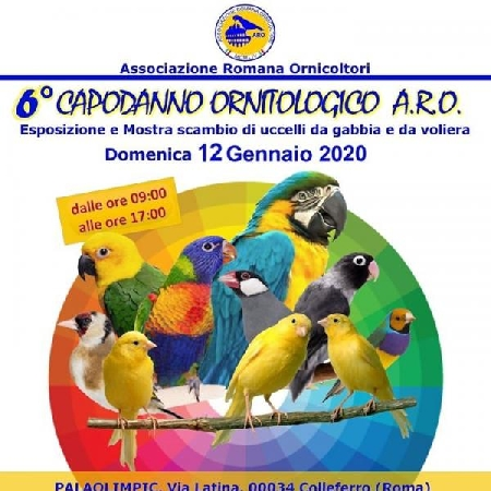 Capodanno Ornitologico